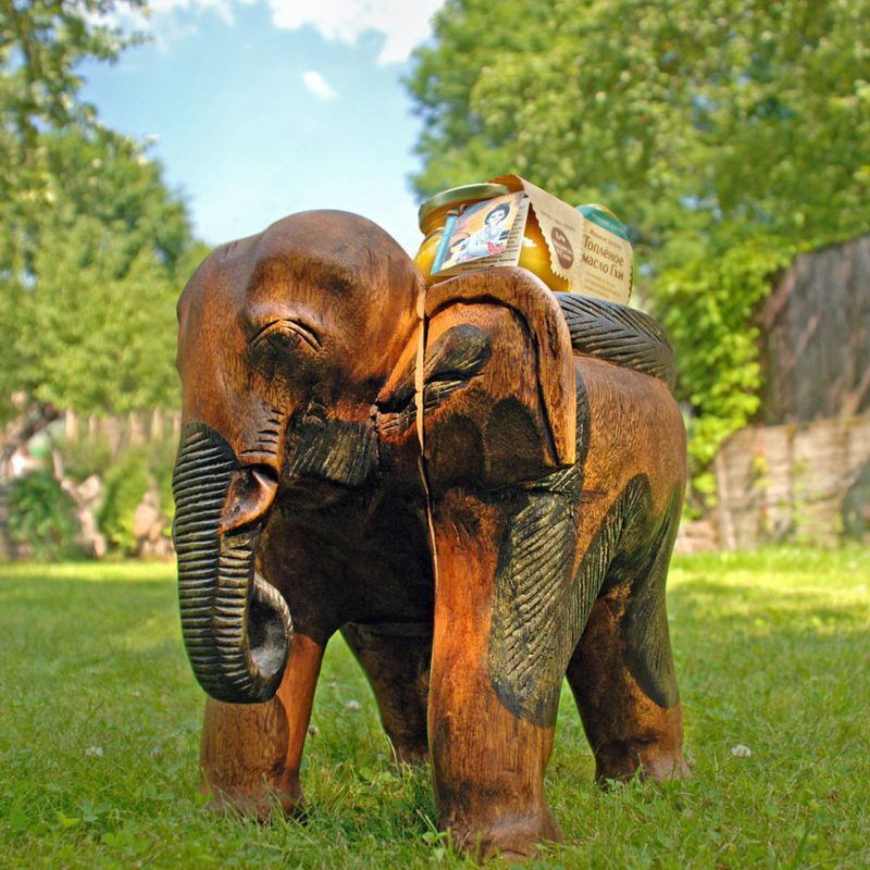 Кооператив Медведь и Слон